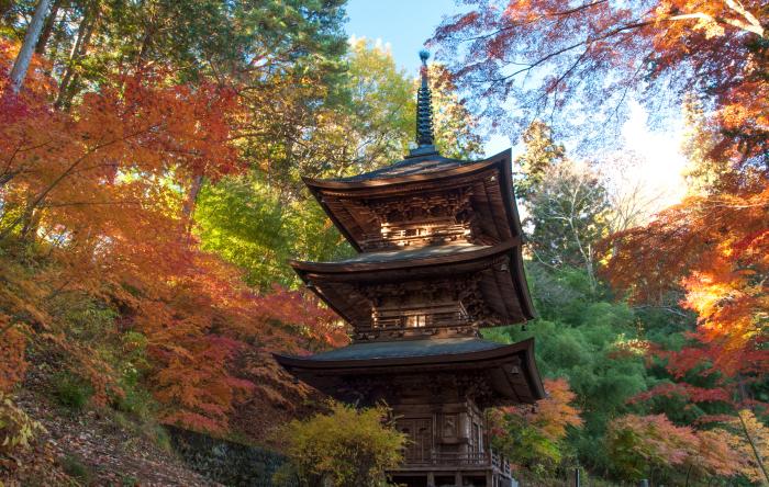 http://www.sakukankou.jp/MT/mtblog/info/03.jpg