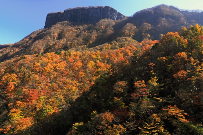 http://www.sakukankou.jp/MT/mtblog/info/11.jpg