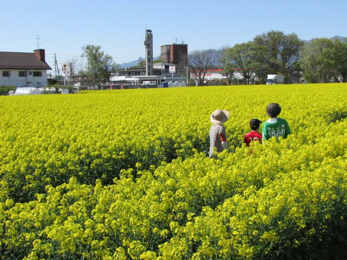 http://www.sakukankou.jp/MT/mtblog/info/14.jpg