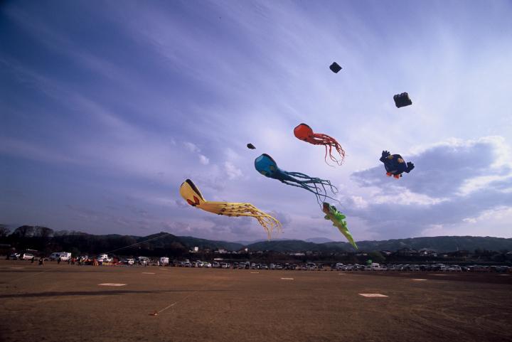 http://www.sakukankou.jp/MT/mtblog/info/2014_08.jpg