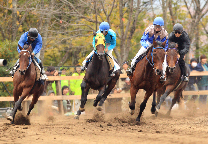 http://www.sakukankou.jp/MT/mtblog/info/21.jpg