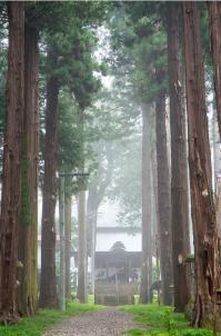 21【入選】 新海神社(伊藤宏).jpg