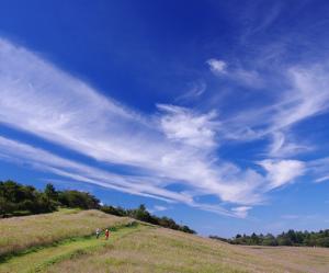 内山牧場.jpg