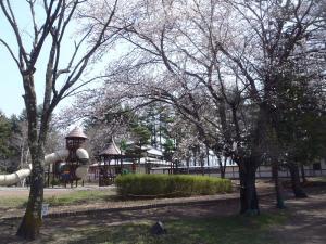 観光ガイド駒場公園写真.jpg