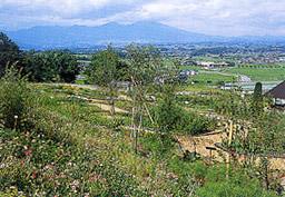 http://www.sakukankou.jp/MT/mtblog/nature/imgs/park06.jpg