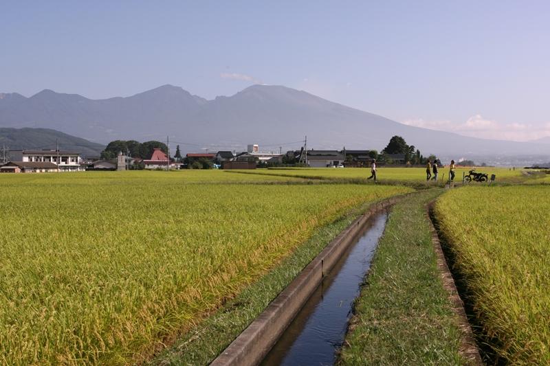 http://www.sakukankou.jp/MT/mtblog/sightseeing/%E4%BA%94%E9%83%8E%E5%85%B5%E8%A1%9B%E7%94%A8%E6%B0%B4.jpg
