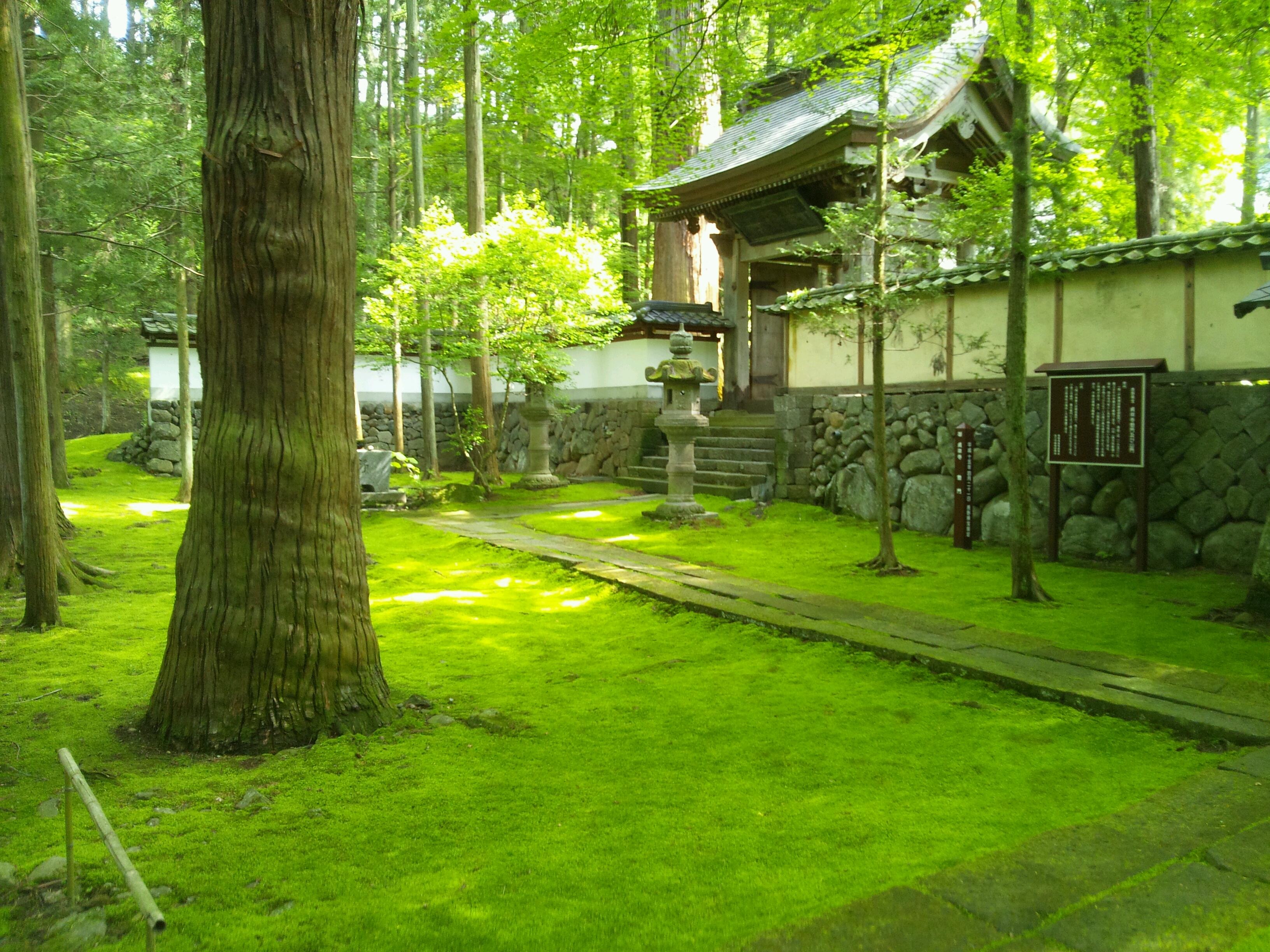 http://www.sakukankou.jp/MT/mtblog/sightseeing/teisyouzi.jpg