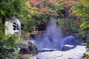 かすがの森3.jpg