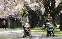 15【パラダ賞】春(三石敏郎).jpg