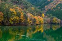 28【入選】「湖畔の秋」(土田幸俊).jpg