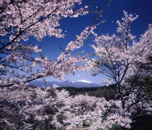 01【最優秀賞】「浅間山を望む」(鈴木清久).jpg