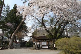 円満寺2.JPG