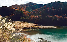 日本で海岸線から一番遠い地点